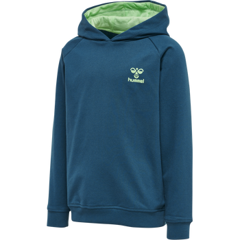 hmlACTION COTTON HOODIE KIDS, BLUE CORAL/GREEN ASH, packshot